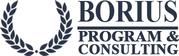 Программа Бориус